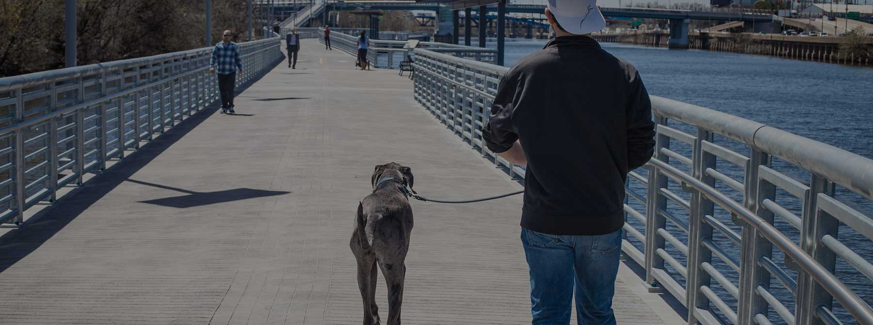 Dog Friendly Philly: Schuylkill River Park